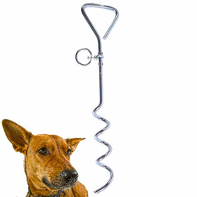 Land Anchor and Dog Tether